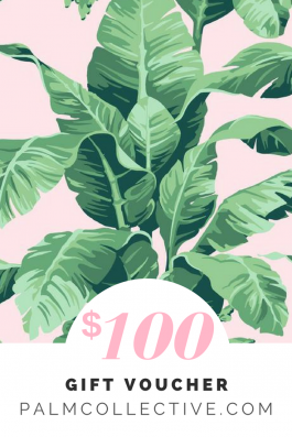 $100 Gift voucher Palm Collective
